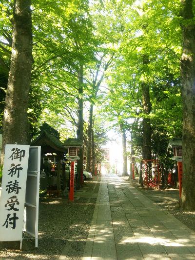 20150501 田無神社参拝5