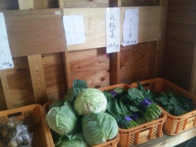 20150528 おばばあちゃん野菜2